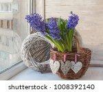 blue hyacinths in a rough rural ... | Shutterstock . vector #1008392140