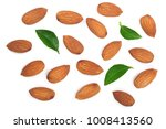 almonds with leaves isolated on ... | Shutterstock . vector #1008413560