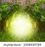 fantasy  background . magic... | Shutterstock . vector #1008439789