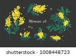 collection of mimosa branches...   Shutterstock .eps vector #1008448723