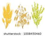 cereals icons of grain plants....   Shutterstock . vector #1008450460