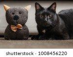 cat with a teddy bear. fluffy... | Shutterstock . vector #1008456220