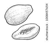 whole and half papaya. vector... | Shutterstock .eps vector #1008457654
