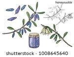 berries and jam    Shutterstock .eps vector #1008645640