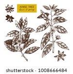 botanical illustration of... | Shutterstock .eps vector #1008666484