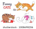 funny cats sleeping in red box  ... | Shutterstock .eps vector #1008698206