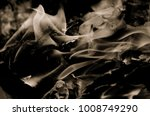 flames caused by combustion... | Shutterstock . vector #1008749290