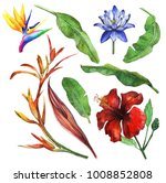 tropical foliage set with... | Shutterstock . vector #1008852808