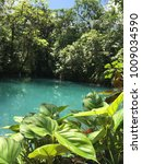 turquoise river runs through... | Shutterstock . vector #1009034590