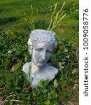 roman head planter with cacti...   Shutterstock . vector #1009058776