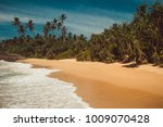 ocean coast with pandanus and... | Shutterstock . vector #1009070428