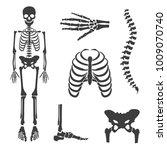 raster illustration parts of... | Shutterstock . vector #1009070740