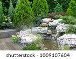artificial tropical pond  brook ... | Shutterstock . vector #1009107604
