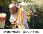 beekeeper collecting honey  | Shutterstock . vector #1009145488