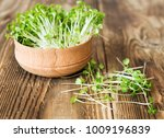 arugula sprouts cut for salad... | Shutterstock . vector #1009196839