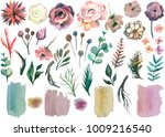 watercolor floral collection... | Shutterstock . vector #1009216540