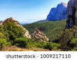 forest hill mountains on the... | Shutterstock . vector #1009217110