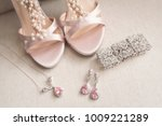 blush pink bridal shoes and... | Shutterstock . vector #1009221289