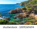 nice detail from costa brava... | Shutterstock . vector #1009269694
