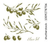 set of hand drawn vector olive... | Shutterstock .eps vector #1009278706