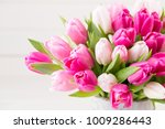 pink tulip on the white... | Shutterstock . vector #1009286443