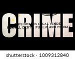 financial crime  money and... | Shutterstock . vector #1009312840