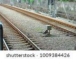 railroad tracks in guangzhou of ...   Shutterstock . vector #1009384426