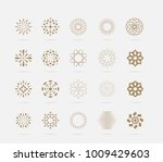 set of golden abstract flower... | Shutterstock .eps vector #1009429603