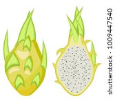 pitahaya yellow  dragon fruit... | Shutterstock .eps vector #1009447540