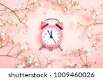 pink alarm clock and delicate... | Shutterstock . vector #1009460026