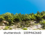 landscape  forest and blue sky | Shutterstock . vector #1009462660