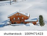 house submerged by the snow   Shutterstock . vector #1009471423