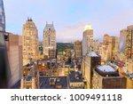 aerial view of new york skyline ... | Shutterstock . vector #1009491118