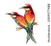 tropical watercolor bright... | Shutterstock . vector #1009577488