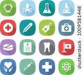 flat vector icon set   hex... | Shutterstock .eps vector #1009581448