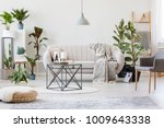 pouf and grey armchair in... | Shutterstock . vector #1009643338