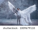 Stock photo beautiful young elf walking with a unicorn she is wearing an incredible light white dress the 1009679110