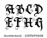 hand drawn ink gothic style... | Shutterstock .eps vector #1009694608