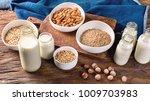 alternative types of milks.... | Shutterstock . vector #1009703983