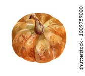 delicious orange pumpkin ... | Shutterstock . vector #1009759000