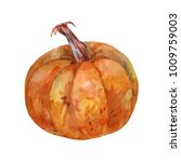 ripe brown pumpkin. watercolor... | Shutterstock . vector #1009759003