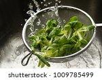 fresh green corn salad in a... | Shutterstock . vector #1009785499