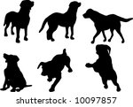 illustration with dog... | Shutterstock . vector #10097857