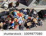 mounts of garbage in the... | Shutterstock . vector #1009877080