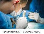 vet doing the operation for... | Shutterstock . vector #1009887598
