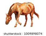 Watercolor Image Of Red Horse...
