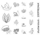 herb and spices outline icons... | Shutterstock .eps vector #1009982464