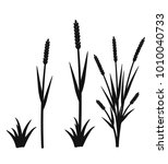 silhouette of grass with... | Shutterstock .eps vector #1010040733