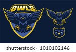 Stock vector sport style of owl mascot 1010102146