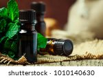 essential oil of peppermint in... | Shutterstock . vector #1010140630